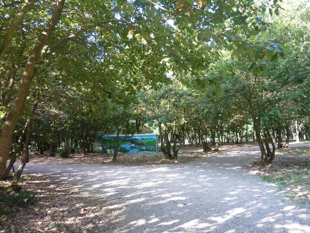 Chemin d'accès aux terrains