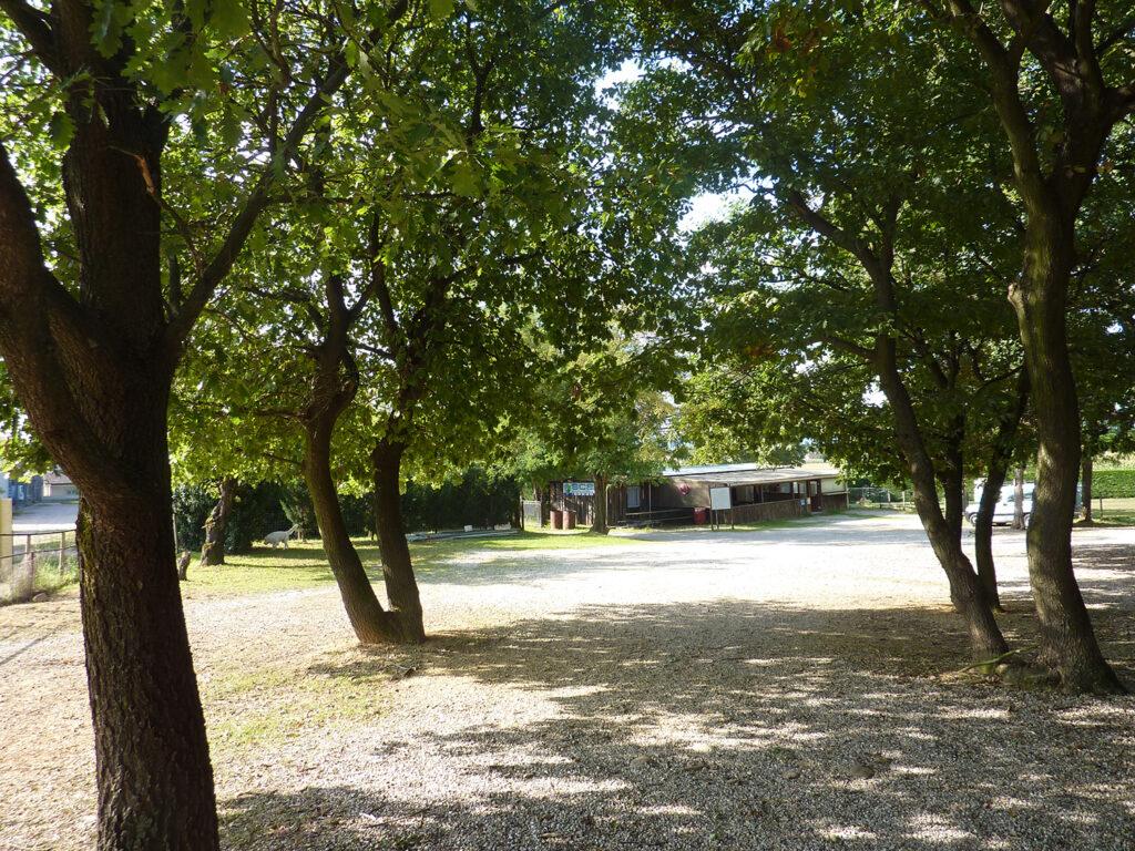 Chemin d'accès au bungalow